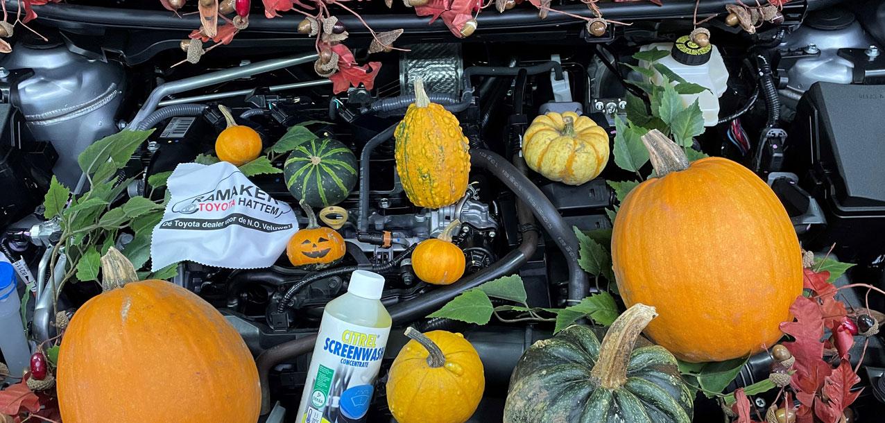 Garage-ramaker-herfst-check